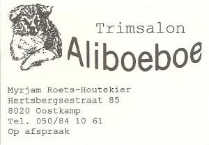 Aliboeboe